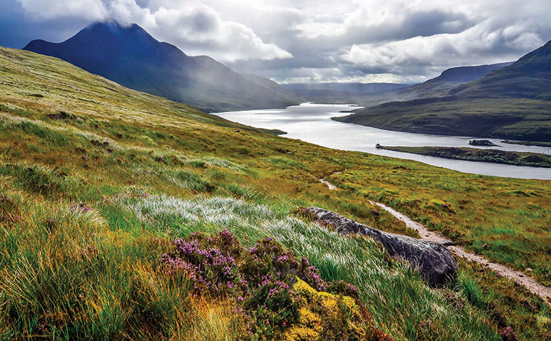 • Many rural parts of Scotland are struggling with slow internet speeds, which can have an impact on bookings.