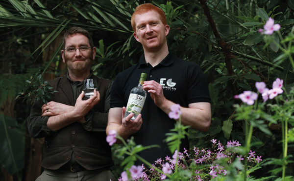 Producer plants new limited gin
