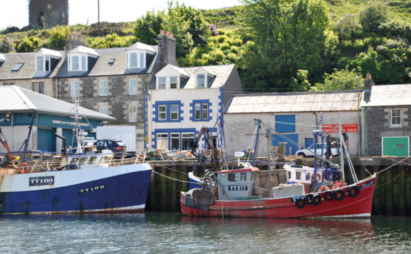 Who will drop anchor in Tarbert?