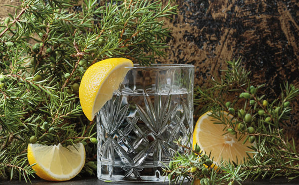 Gin experience essential for bars