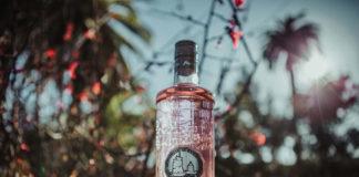 Gin-Premium-Puerto-de-Indias-Strawberry-LR